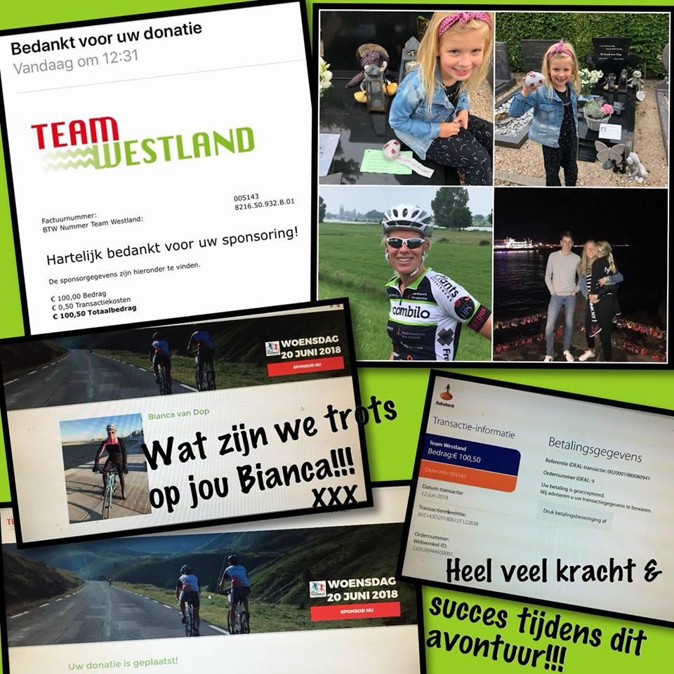 team westland 18