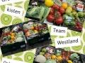 groentekisten team westland